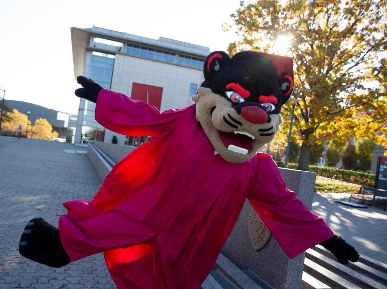 Tips and Resources | University Of Cincinnati